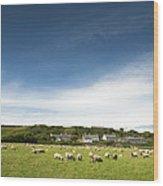 Landscape Near East Prawle In England Wood Print