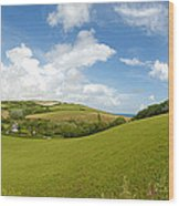 Landscape Near Hallsands In Devon Gb Wood Print