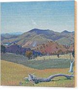 Landscape Near Yass Wood Print
