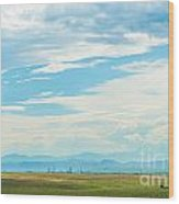 Landscape Of Denver Colorado Wood Print