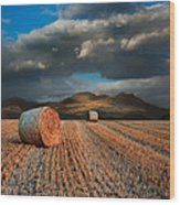 Landscape Of Hay Bales In Front Of Mountain Range With Dramatic  Wood Print