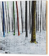 Landscape Winter Forest Pine Trees Wood Print