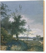 Landscape With A Fox Chasing Geese Wood Print