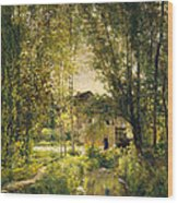 Landscape With A Sunlit Stream Wood Print