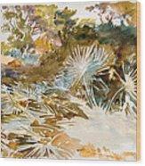 Landscape With Palmettos Wood Print