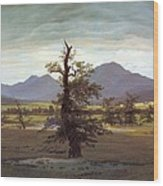 Landscape With Solitary Tree Wood Print