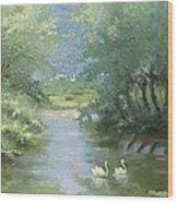 Landscape With Swans Wood Print