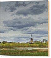 Landscape With The Dezwaan Dutch Windmill On Windmill Island In Holland Michigan Wood Print