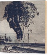 Landscape With Three Trees Wood Print