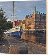 Landskrona Se 202 Wood Print