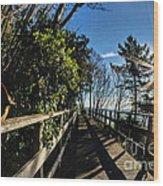 Langmoor-lister Bridge Wood Print