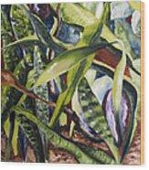Languid Cactii Wood Print by Lisa Boyd