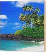 Laniakea Beach Oahu Wood Print by Lisa Cortez