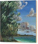 Lanikai Beach Wood Print