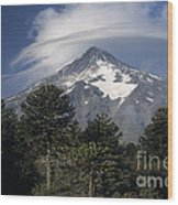 Lanin Volcano And Araucaria Trees Wood Print
