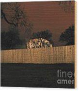 Lanscape I10a D.c. Wood Print
