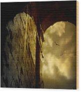 L'antico Portale Wood Print
