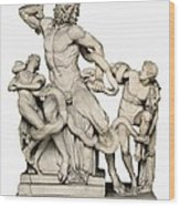 Laocoon With His Sons. 1st C. Bc Wood Print by Everett