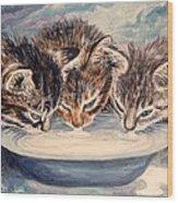 Lap Of Luxury Kittens Wood Print