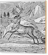 Laplander, C1785 Wood Print