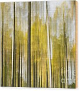 Larch Grove Blurred Wood Print
