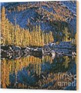 Larch Tree Reflection In Leprechaeun Lake  Wood Print
