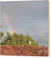 L'arcobaleno Wood Print