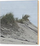 Large Dunes Wood Print by Cathy Lindsey