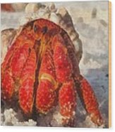 Large Hermit Crab On The Beach Wood Print
