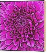 Large Pink Dahlia Retro Style Wood Print