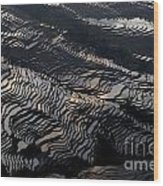 Large Scale Of Rice Terrace Wood Print