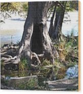 Large Tree Trunk Wood Print