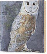 Large White Barn Owl Wood Print