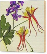 Larkspur And Columbine Wood Print