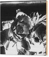 Las Vegas Flowers Wood Print