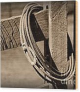 Lasso On Fence Post Rustic Wood Print