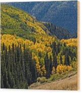 Last Dollar Road  6 Wood Print