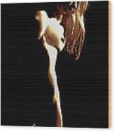 Last Glance Wood Print by Murray Bloom