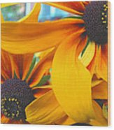 Last Holdouts Of The Season - Black Eyed Susans - Floral Photography Wood Print
