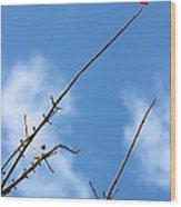 Last Leaf Standing Wood Print