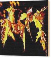 Last Leaves Of Summer Wood Print