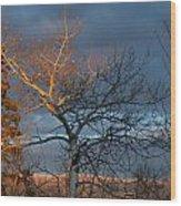 Last Light Last Leaves Wood Print