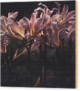 Last Light Lillies Wood Print