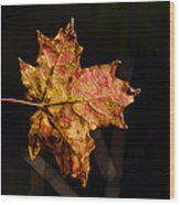 Last Maple Leaf Wood Print