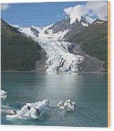 Last Of The Ice Bergs  Wood Print
