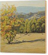 Last Rays Wood Print