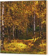 Last Song Of The Autumn 1 Wood Print