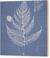 Lastrea Pulvinulifera Wood Print by Aged Pixel