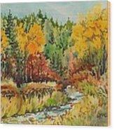 Latah Creek Fall Colors Wood Print