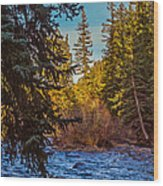 Late Afternoon Along The South Platte Wood Print